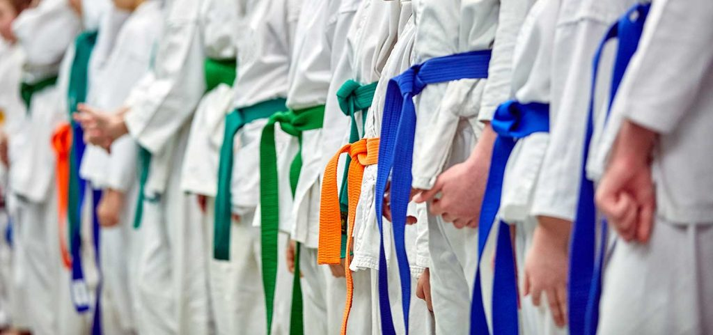Just like belts, your martial arts business can progress through different levels